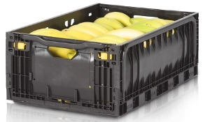 Asda Signs Banana Container Agreement With Ifco