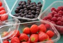 Holfeld Plastics targets soft fruit with new punnet